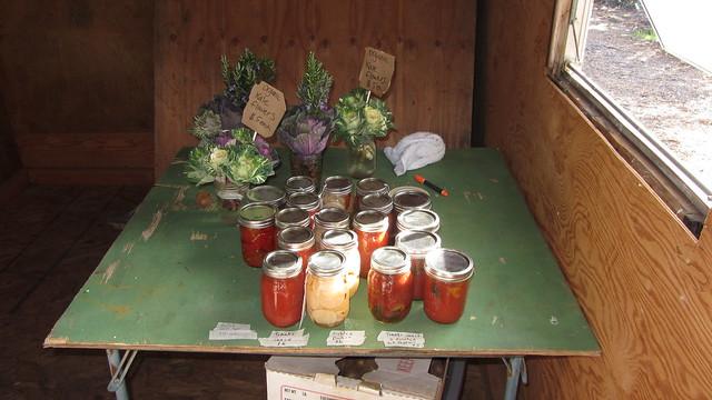 IMG_7123 Goleta Ellwood organic farm stand Langlo Ranch road tomato sauce