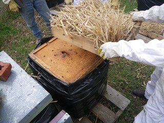 Adding a vent box to beehive | by Shawn Caza
