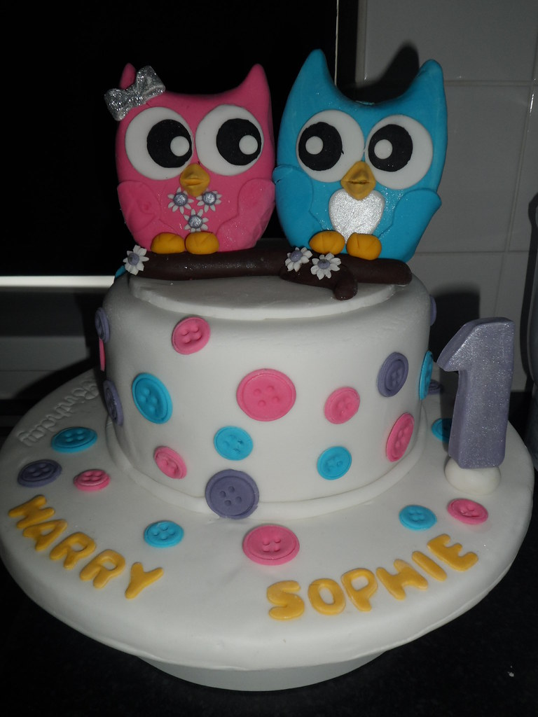 Remarkable Twins 1St Birthday Cake With A Fondant Twin Owl Cake Toppe Flickr Personalised Birthday Cards Sponlily Jamesorg