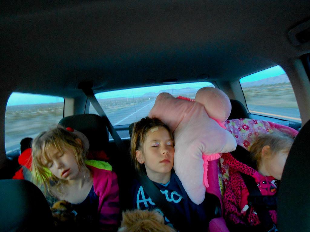 road-trip-sleep.jpg | Nikon S3300 ISO400 Aperture f/3.5 Expo… | Flickr
