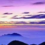 紫醉神迷 Purple sunset