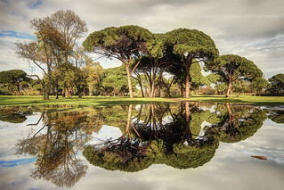 [ HDR ] Puddles Reflection at the Golf Old Course Cannes - Mandelieu #3