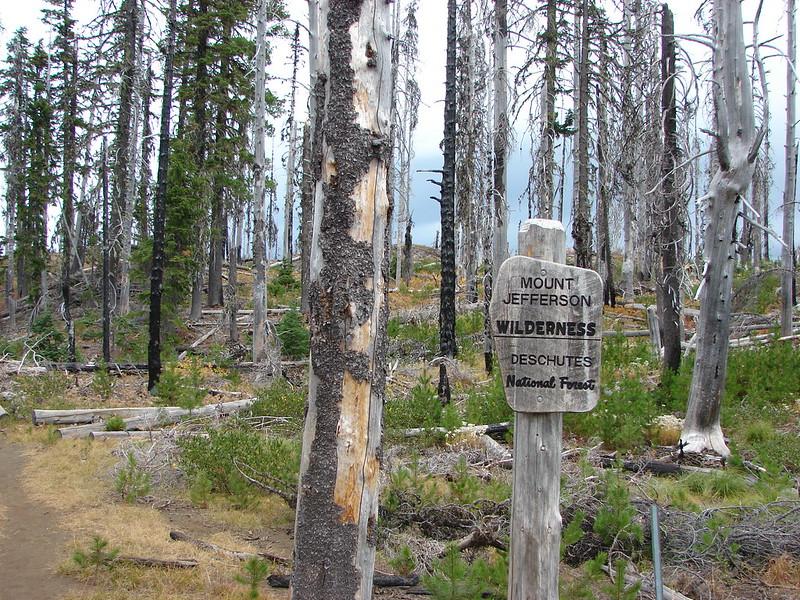 Mount Jefferson Wilderness sign