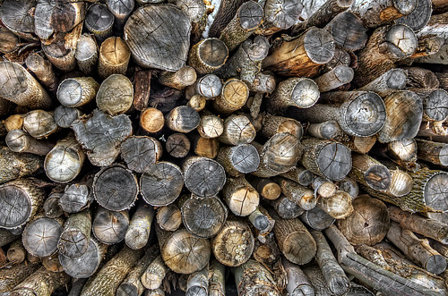 Logs | by Derek Mellon