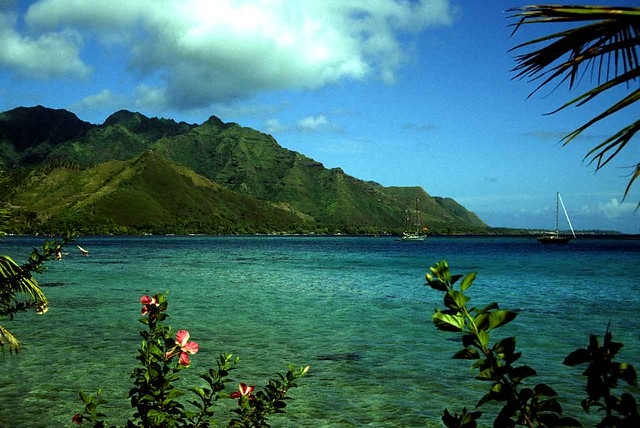 Opunohu Bay - Moorea - French Polynesia