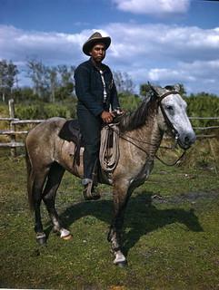 Unidentified Seminole cattleman: Brighton Reservation, Florida