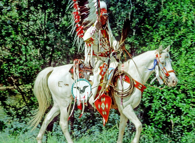 Indian chief - NK1818