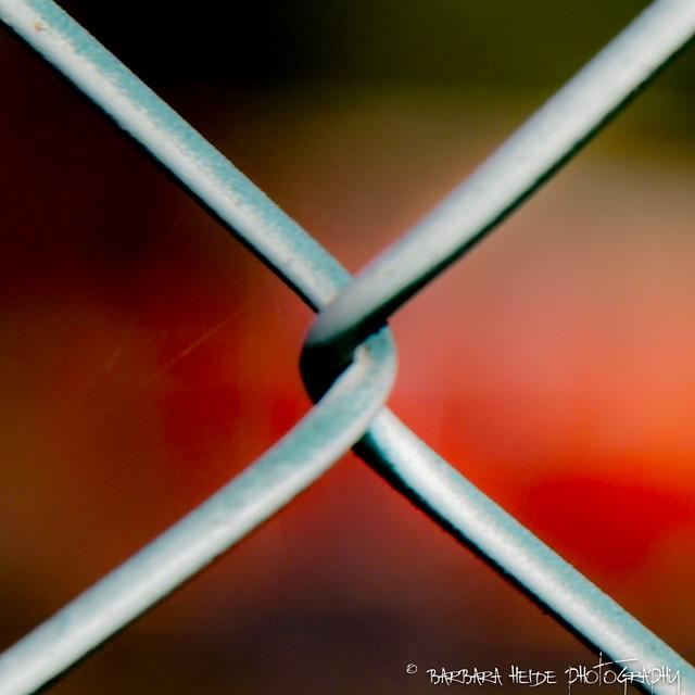 Triangles (explore)