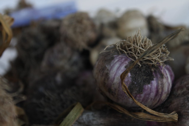 """Garlic is divine. Few food items can taste so many distinct ways, handled correctly. Misuse of garlic is a crime..."