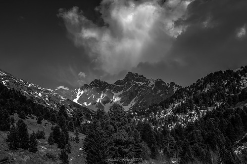landscape mountain sky nuages clouds tree sapin vallon vallée valley mountainside cimes crêtes neige snow spring printemps picdemontagne rocher aiguillerocheuse mountainpeak mountainridge mountainrange alpes savoie vanoise nature sauvage lumière ombre contraste weather light shadow atmosphère mood monochrome noiretblanc blackandwhite vallondufruit