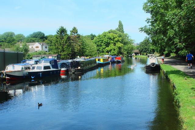 Leeds Liverpool Canal Rodley Leeds 03