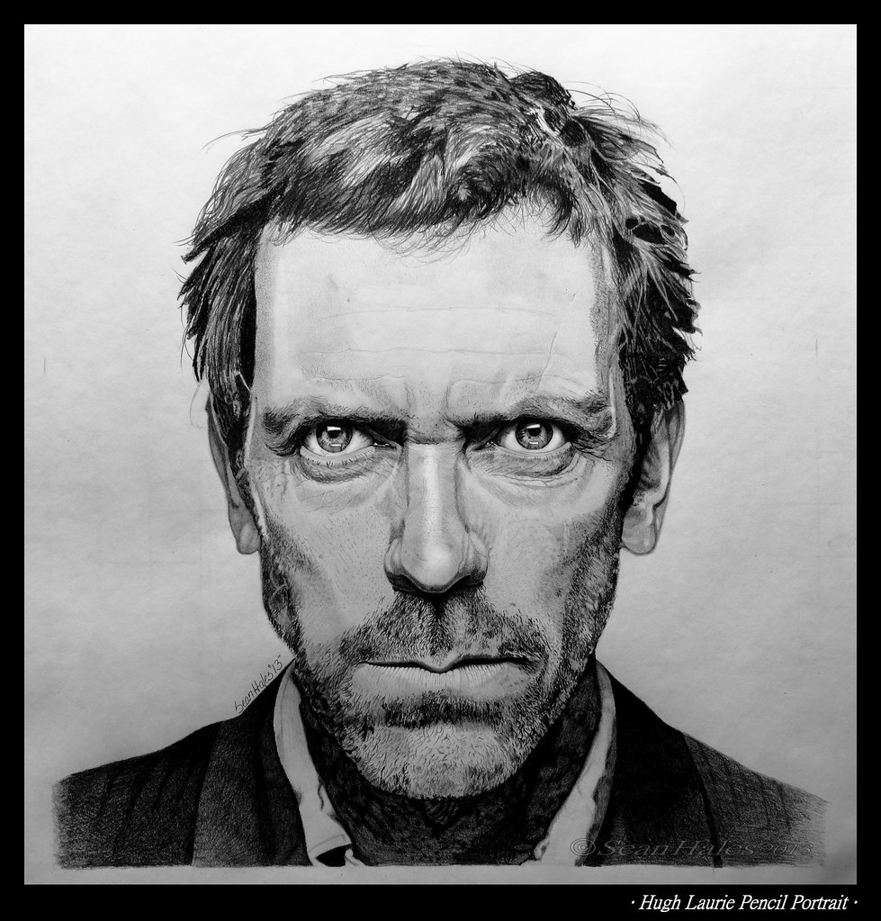 Hugh laurie pencil portrait this is a pencil drawing of hu