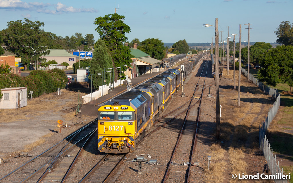 5 81's at Singleton by LC501