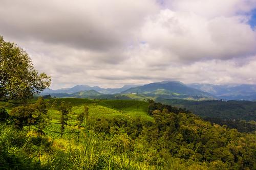 travel cloud india mountain green day cloudy samsung bluesky bluemountains tamilnadu teaplantation kumar kumaravel nx100 samsungnx samsungnx100 nx100samsung nallamudiviewpoint