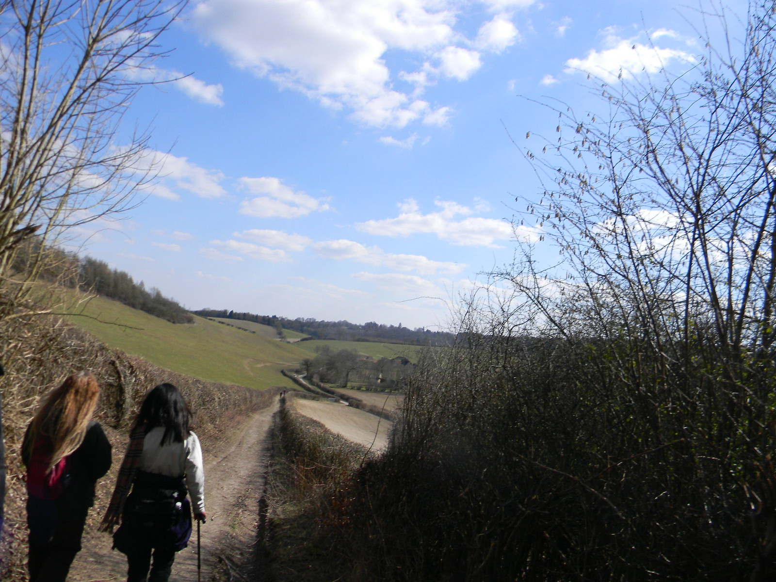 Down to St James' Henley via Stonor (Stonor Shortcut)