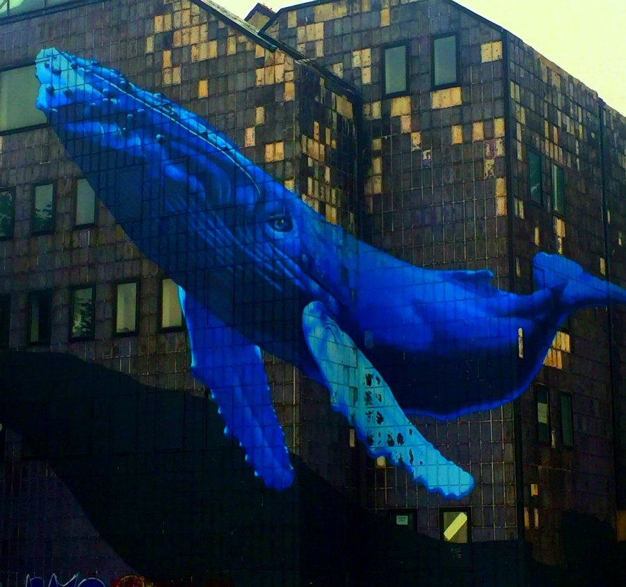 Zagreb street art - the whale