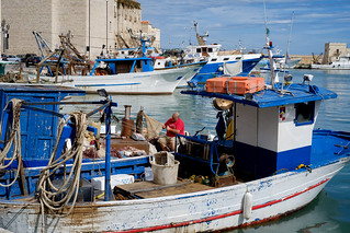 Fisherman at work - Trani
