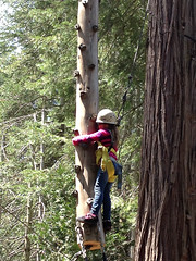 Homeschool Family Camp Spring 2013-25
