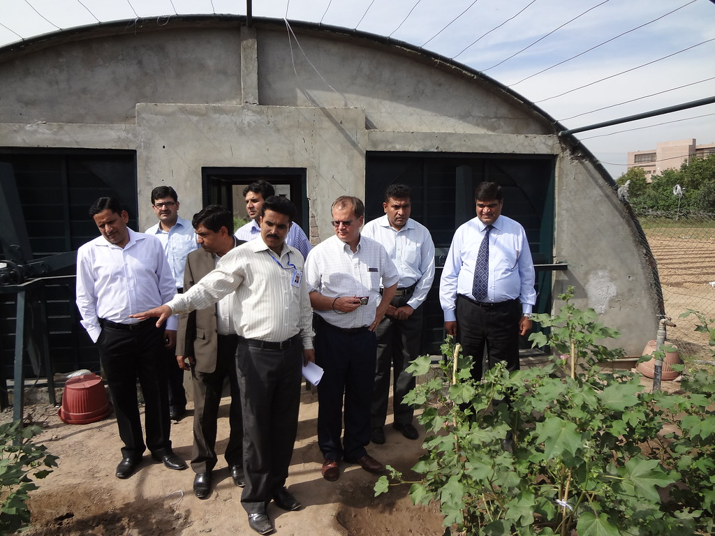 U.S. and Pakistani Scientists Work Together to Protect Cot ...