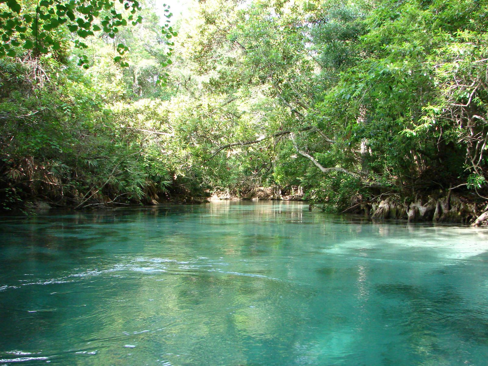 Weeki Wachee Springs Kayak Trip