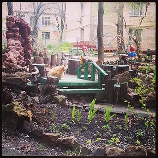 #moscow #cat #deshyovayapopularnostkotikov | by krukan