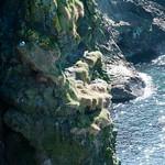 04 IRL Norte, Caseway Coast Route 13