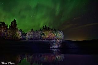 Aurora Borealis (Northern Lights )