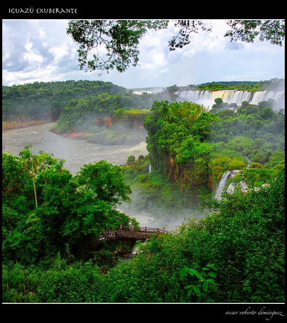 Iguazú exuberante