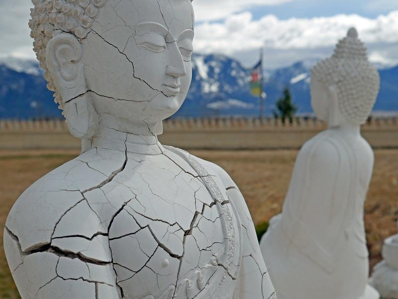 1000 Buddhas (47)