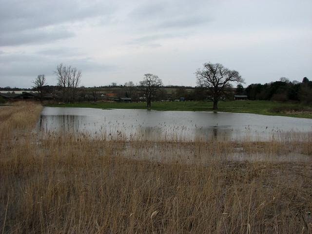 Martlesham Creek