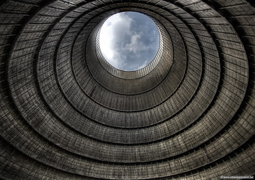 Looking up | by Lucid Dreams Photo