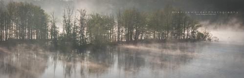 morning trees light panorama mist fog sunrise golden lakewater imaginefotocom