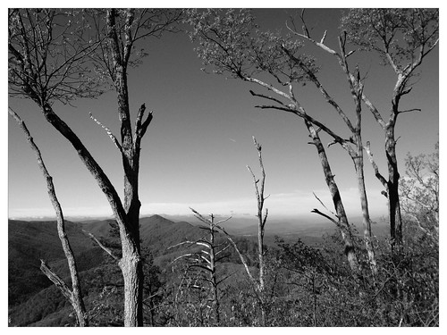 bw mountainbiking blueridgeparkway whetstoneridge uploaded:by=flickrmobile flickriosapp:filter=panda pandafilter