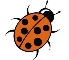 FTT Ladybird
