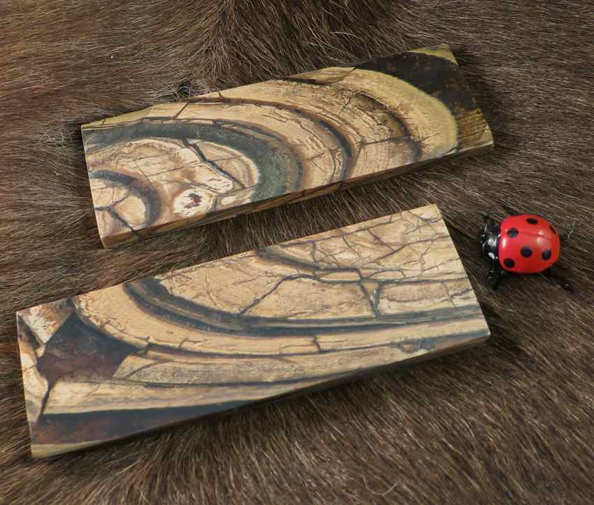 Raffir Mammoth Ivory Scales | Fine Mammoth Ivory Scales from… | Flickr