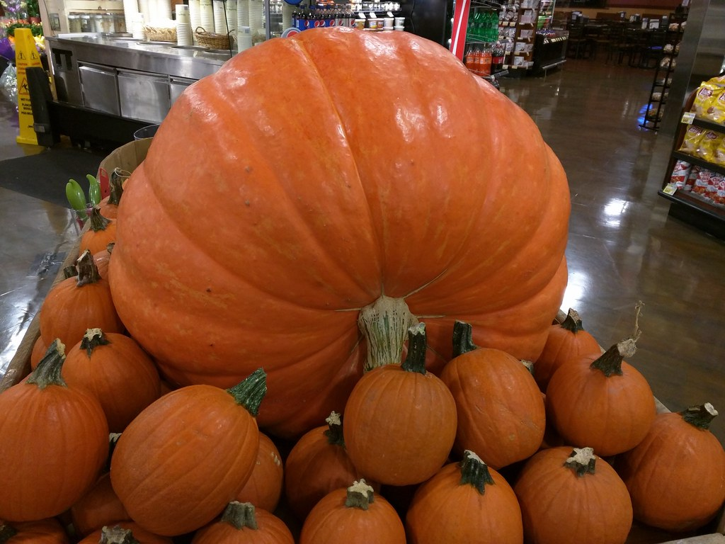 It S The Great Pumpkin Charlie Brown Shoprite 1101 Gover Flickr