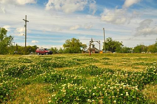 travel sky usa church nature landscape la us spring scenery south small scene charm southern wildflowers 旅游 风景 自然 watertown houma 风光 redcar 春天 美国 vcation 南方 路易斯安那州 侯马