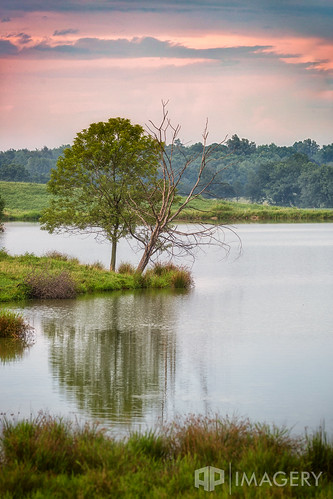pond tree scene country 100400 sunset peaceful nature water reflection sky compression lake calm rural dead kentucky usa