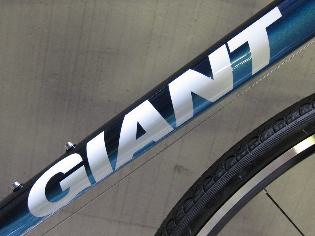giant escape r3