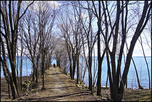 toronto ontario canada water bare branches lakes bluesky lakeshore lakeontario lakeshoreblvd eastersunday 2013 analeesmith sonyslta33