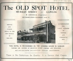 Murray Street 77 Old Spot Hotel c1928 Ethel M. Sheehan Publican, but not recorded within Hoad's publication