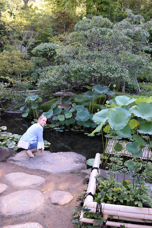 Hasedera Temple - a perfect day trip