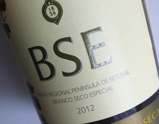 BSE 2012 | by magnacasta