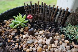 Miniature Garden | by jenniferworthen