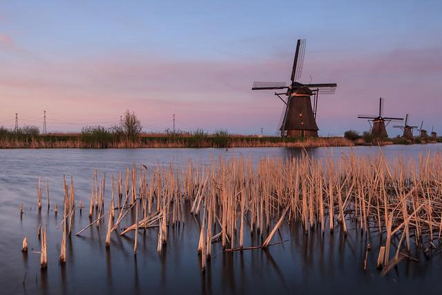 Kinderdijk World Heritage Site