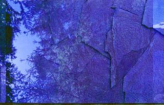 stone trees | by CraftyMoni