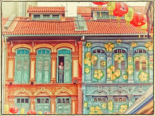 chinatown singapore windows fenster fensterläden shutters colourful colours outdoor asia windowwednesdays newwallwednesday textures texturen googlenik dwwg colour colors farbig bunt netartii