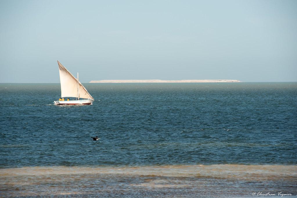 D725131 Lanche Dans Le Banc D Arguin En Mauritanie Tonton