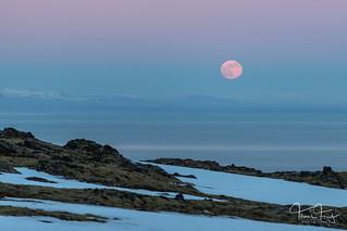Moonrise   by Tómas Freyr