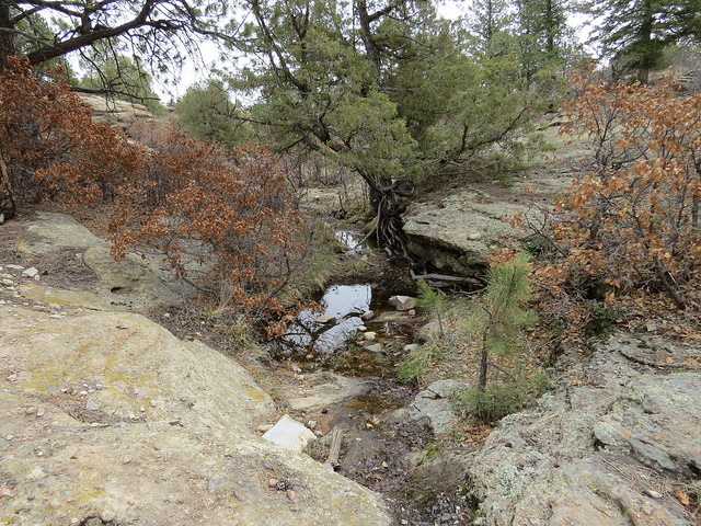 On the East Canyon Trail